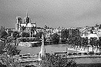 Black and white photo Paris - Institut du Monde Arabe - View onto Ile de la Cité